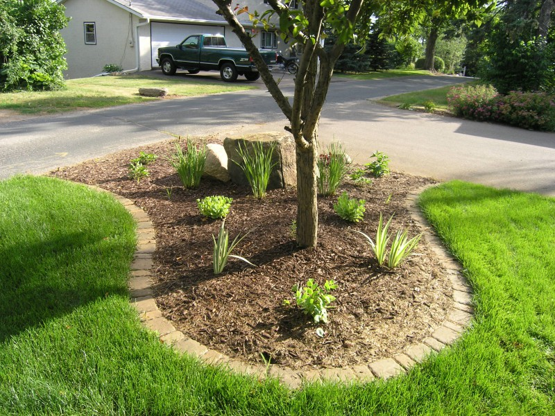 Grass border edging image of landscape edging ideas cheap for Border grasses for landscaping