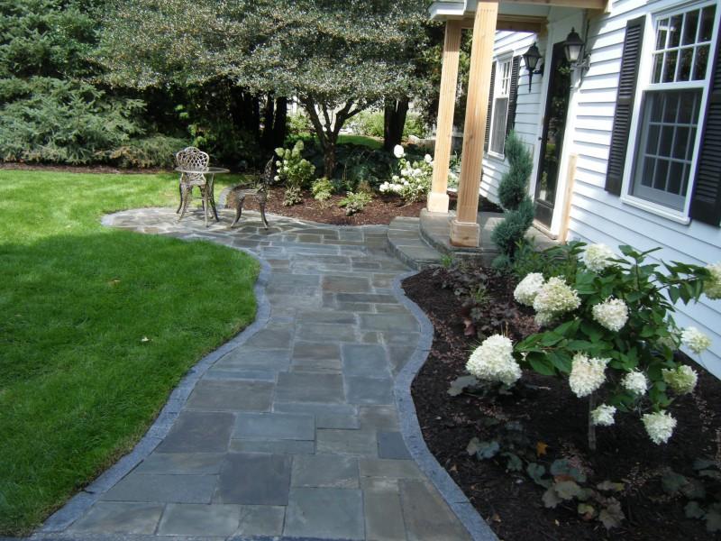 Mortard Bluestone Front Entrance Steps Blue Stone Pattern Cut Curving Sidewalk And Irregular Patio With Granite Edging Hydrangea Tree